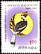Great Hornbill Buceros bicornis  1983 Natural history society