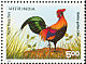 Red Junglefowl Gallus gallus  1996 World poultry congress