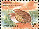 Manipur Bush Quail Perdicula manipurensis  2006 Endangered birds of India Booklet