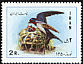 Barn Swallow Hirundo rustica  1971 New year stamps