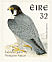 Peregrine Falcon Falco peregrinus  1997 Birds, Falcon and Robin Strip, sa, ISS