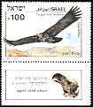 Lappet-faced Vulture Torgos tracheliotos  1985 Biblical birds s 44x29mm