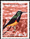 Variable Sunbird Cinnyris venustus  1999 Birds