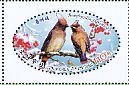 Japanese Waxwing Bombycilla japonica