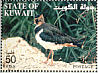 Northern Lapwing Vanellus vanellus  2002 The Scientific Center of Kuwait Booklet