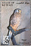 Common Kestrel Falco tinnunculus  2002 The Scientific Center of Kuwait Booklet