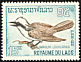 White-crested Laughingthrush Garrulax leucolophus  1966 Birds