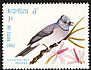Black-naped Monarch Hypothymis azurea  1982 Birds