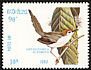 Common Tailorbird Orthotomus sutorius  1982 Birds