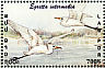 Intermediate Egret Ardea intermedia  2001 Philanippon 01 Sheet, no emblem on stamps