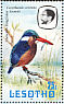 Malachite Kingfisher Corythornis cristatus  1981 Birds Booklet