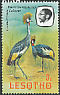 Grey Crowned Crane Balearica regulorum  1982 Imprint 1982 on 1981.01 With wmk