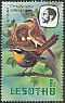 Cape Robin-Chat Cossypha caffra  1982 Imprint 1982 on 1981.01 With wmk