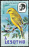 Yellow Canary Crithagra flaviventris  1982 Imprint 1982 on 1981.01 With wmk