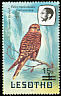 Greater Kestrel Falco rupicoloides  1986 Surcharge on 1981.01-2, 1982.01-2