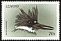 Belted Kingfisher Megaceryle alcyon  1999 Birds of the world