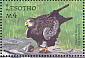 Yellow-billed Kite Milvus aegyptius  2001 Wildlife of Southern Africa 6v sheet