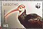 Southern Bald Ibis Geronticus calvus  2004 WWF Sheet with 2 sets