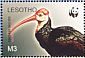 Southern Bald Ibis Geronticus calvus  2004 WWF Sheet with 4 sets