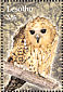 Pel's Fishing Owl Scotopelia peli  2004 Birds Sheet
