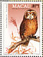 Western Barn Owl Tyto alba  1993 Birds of prey Sheet with 1 set