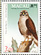 Peregrine Falcon Falco peregrinus  1993 Birds of prey Sheet with 1 set