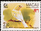 Atlantic Canary Serinus canaria  1995 Singapore 95