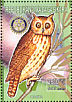 Madagascan Owl Asio madagascariensis  1999 Animals of the world 9v sheet