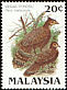 Malayan Peacock-Pheasant Polyplectron malacense  1986 Protected wildlife of Malaysia p 13�