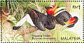 Rhinoceros Hornbill Buceros rhinoceros  1996 Stamp week 6v sheet