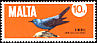 Blue Rock Thrush Monticola solitarius