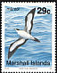 Wedge-tailed Shearwater Ardenna pacifica  1991 Birds