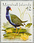 Purple Gallinule  Porphyrio martinica