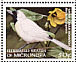 Chuuk Monarch Metabolus rugensis  1998 Endemic birds