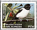 Yap Monarch Monarcha godeffroyi  1998 Endemic birds