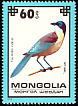 Azure-winged Magpie Cyanopica cyanus  1979 Protected birds