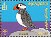 Atlantic Puffin Fratercula arctica