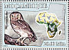 Little Owl Athene noctua  2007 Owls Sheet