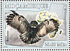 Great Grey Owl Strix nebulosa  2007 Owls Sheet