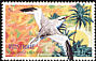 Red-billed Tropicbird Phaethon aethereus  2003 Caribbean birds