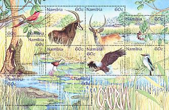 hornbill bird logo