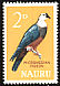 Micronesian Imperial Pigeon Ducula oceanica  1965 Definitives