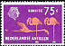 American Flamingo Phoenicopterus ruber  1973 Definitives