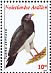 Red-throated Caracara Ibycter americanus  2009 Birds Sheet