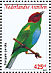 Bay-headed Tanager Tangara gyrola
