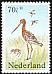 Black-tailed Godwit Limosa limosa  1984 Welfare funds