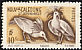 Kagu Rhynochetos jubatus  1948 Definitives