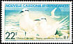 Black-naped Tern Sterna sumatrana  1978 Ocean birds