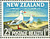 Red-billed Gull Chroicocephalus scopulinus  1964 Health stamps 2 sheets