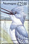 Belted Kingfisher Megaceryle alcyon  2000 Birds of America